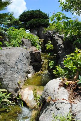 築山の池の滝